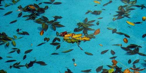 L entretien courant d 39 une piscine quoi quand comment for Nettoyage piscine hors sol