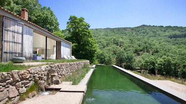 maison-archi-piscine-naturelle4