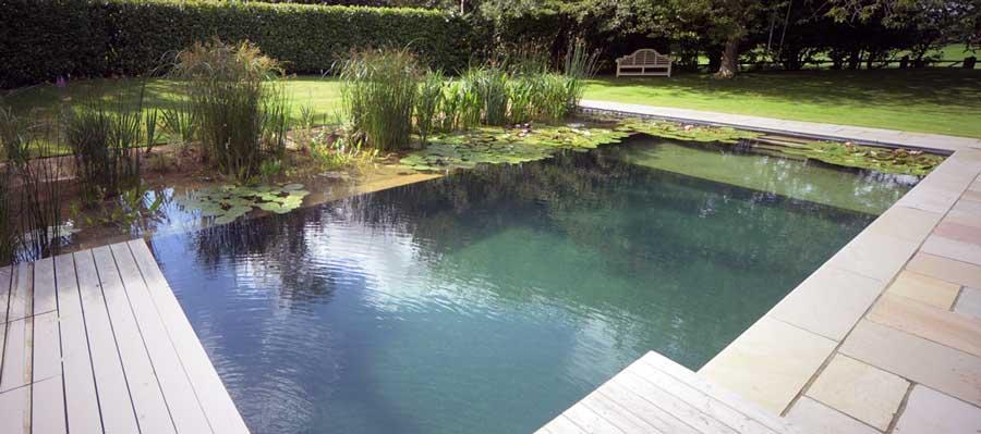 la piscine naturelle est elle faite pour vous. Black Bedroom Furniture Sets. Home Design Ideas