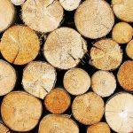 Piscine en Bois : 3 Conseils Pour Bien Choisir le Bois de sa Piscine