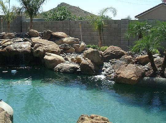 Evolution design piscines phoenix arizona usa ann es 1990 for Palmier factice