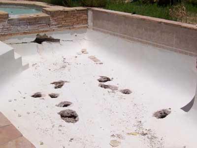 comment-bien-choisir-piscinier-pisciniste