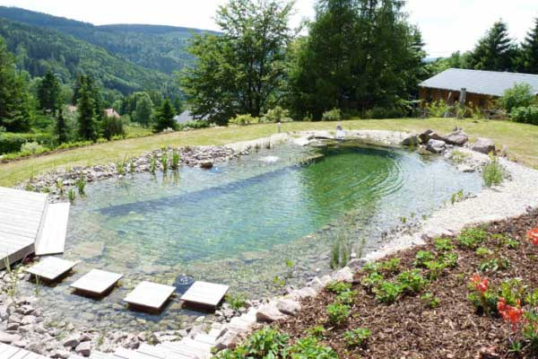 Attrayant Piscine Naturelle Idees De Conception