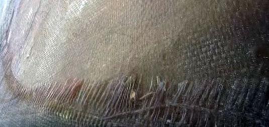 Absence de protection extérieure des couches de fibre de verre + résine