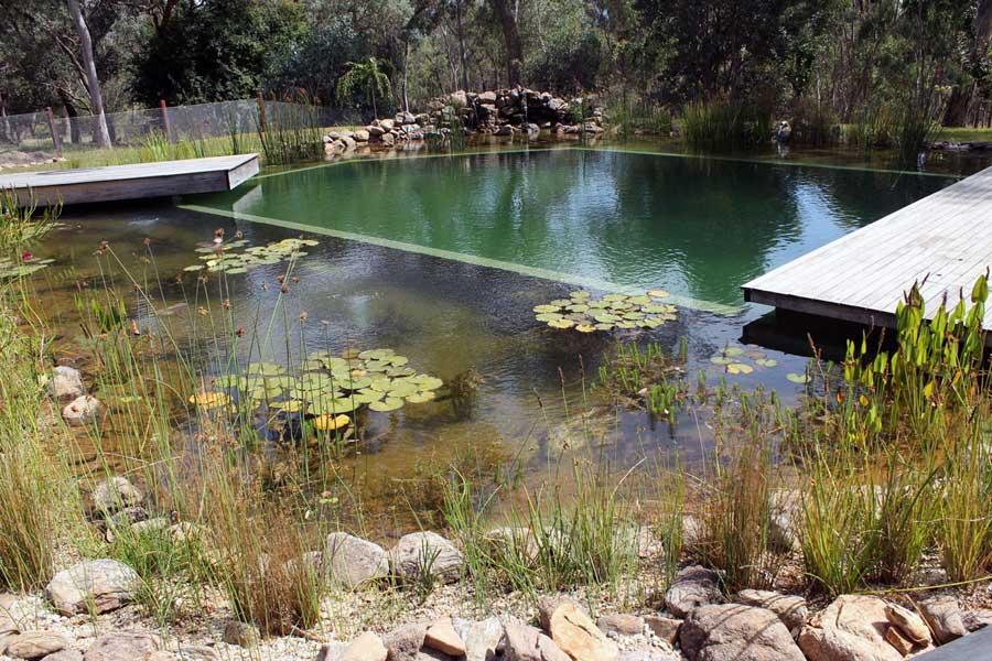 piscine de service de rencontres de poissons Hook up Seattle