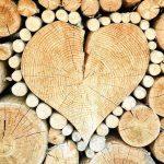 Plage ou Terrasse de Piscine en Bois : Quel Bois Choisir et Pourquoi ?