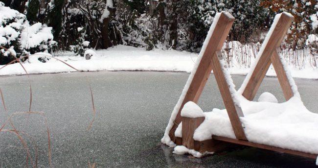hivernage piscine naturelle